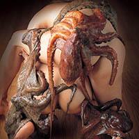 Tentacle sex - medzi chobotnicami